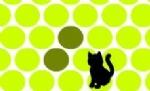 Kediyi Sıkıştır